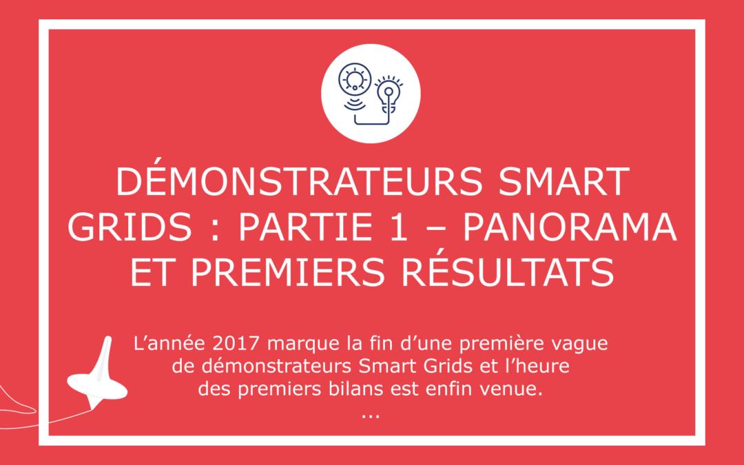 Démonstrateurs Smart Grids : Partie 1 – Panorama et premiers résultats